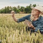 Du học Hà Lan ngành nông nghiệp